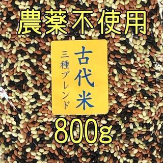 ちから様専用 古代米3種ブレンド800g・黒米400g・赤米400g(米/穀物)