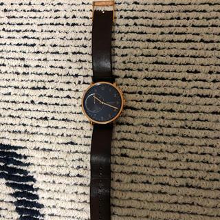 スカーゲン(SKAGEN)のSKAGEN メンズ腕時計(腕時計(アナログ))
