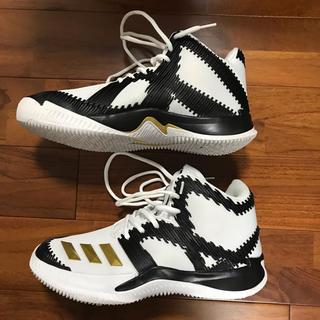 adidas - adidas バスケットシューズ