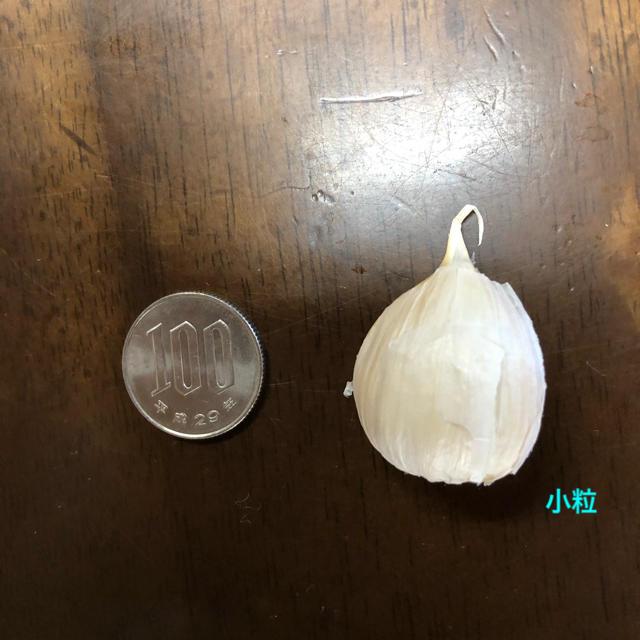 青森県産にんにく  バラ小粒200g 食品/飲料/酒の食品(野菜)の商品写真