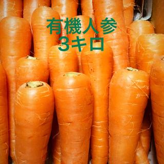 九州産 小さめ有機甘人参3キロ 【有機JAS認証取得】(野菜)