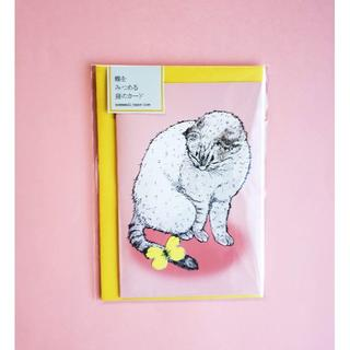 nemunoki paper item 蝶をみつめる猫のカード(カード/レター/ラッピング)
