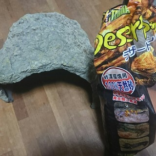 爬虫類 シェルター デザートサンド(爬虫類/両生類用品)