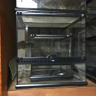 グラステラリウム4545 爬虫類ケージ エキゾテラ (爬虫類/両生類用品)