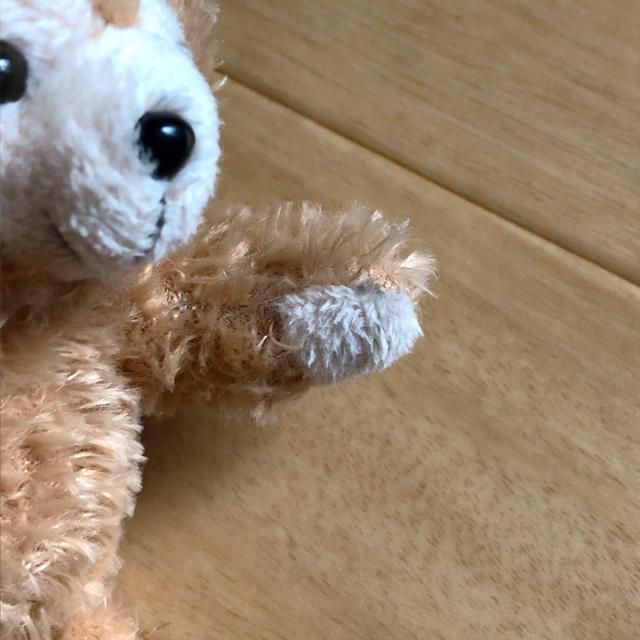 ダッフィー ぬいぐるみ 2つセット エンタメ/ホビーのおもちゃ/ぬいぐるみ(ぬいぐるみ)の商品写真