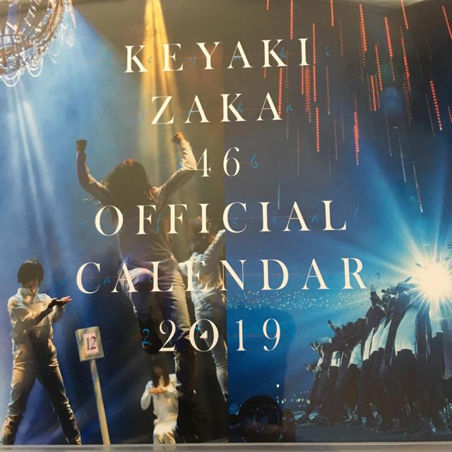 欅坂46 2019年度 卓上カレンダー 新品未開封 エンタメ/ホビーのタレントグッズ(アイドルグッズ)の商品写真