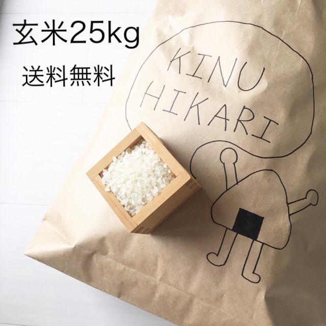 玄米 食品/飲料/酒の食品(米/穀物)の商品写真