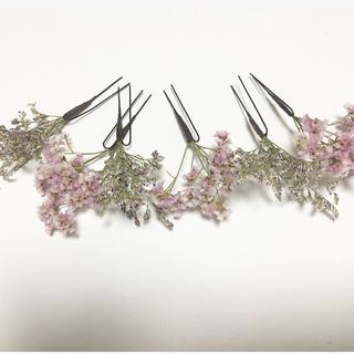 カスタネ(Kastane)のドライフラワー 髪飾り(ドライフラワー)