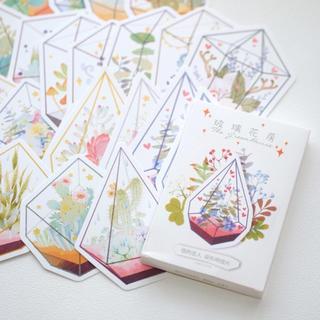 海外ポストカード ダイカットポストカード  テラリウム(カード/レター/ラッピング)