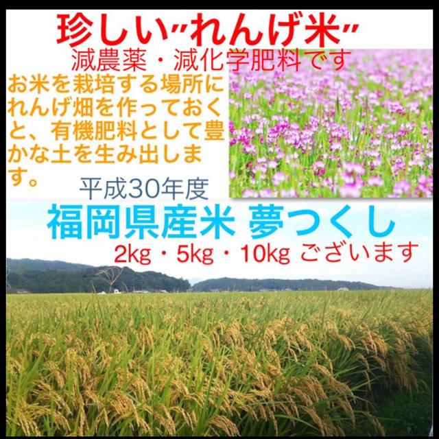 大人気セール★日本の台所‼️福岡県しか手に入らない´夢つくし´減農薬・減化学肥料 食品/飲料/酒の食品(米/穀物)の商品写真