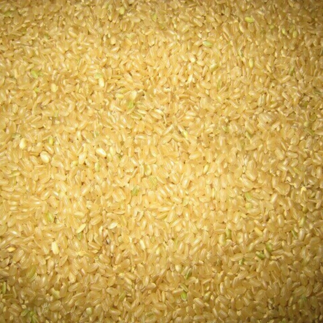 即購入可 送料込 平成30年産 純新米 愛媛県産 にこまる 玄米 30kg 直送 食品/飲料/酒の食品(米/穀物)の商品写真