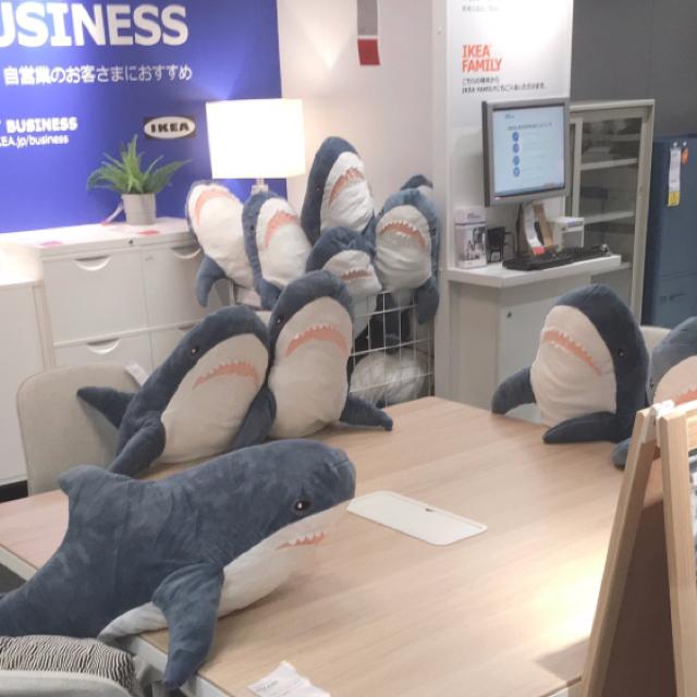 「イケア サメ」の画像検索結果