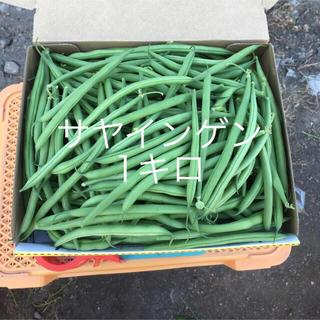 鹿児島産サヤインゲン1キロ^_^(野菜)