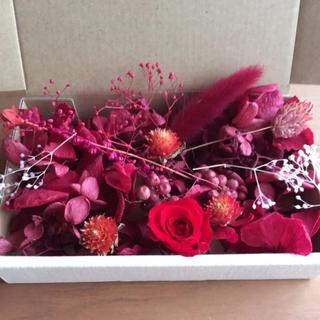 レッド&ワイン 花材 アソートボックス(プリザーブドフラワー)