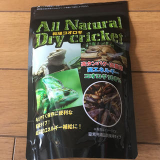 爬虫類餌 乾燥コオロギ 開封済み(爬虫類/両生類用品)