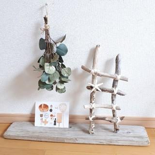 流木の小さなラダー(家具)