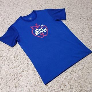 ザノースフェイス(THE NORTH FACE)のTHE NORTH FACE Tシャツ ブルー  Sサイズ(Tシャツ/カットソー(半袖/袖なし))