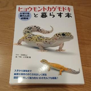 ヒョウモントカゲモドキと暮らす本(爬虫類/両生類用品)