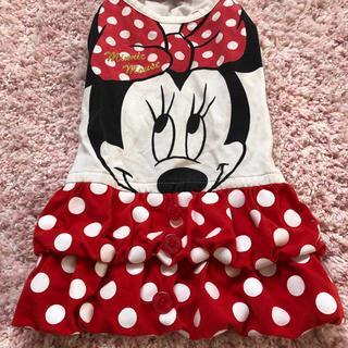 ディズニー(Disney)のペットパラダイス ミニーマウスワンピース(ペット服/アクセサリー)