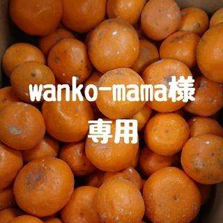 【wanko-mama 様 専用】完熟早生みかん10㎏(フルーツ)