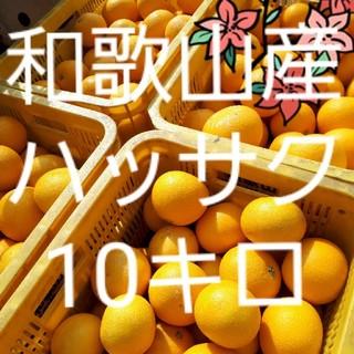 ぱんたさま 専用 和歌山県産 減農薬 ハッサク(10㎏)(フルーツ)