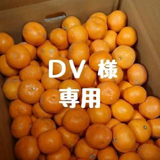 【DV 様 専用】完熟早生みかん 10㎏ 小玉(フルーツ)