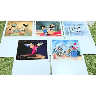 Disney - ミッキー ポストカード