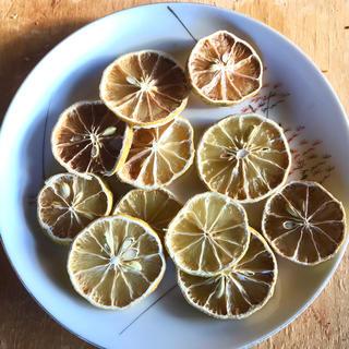 みひもも様専用 熊本産無農薬レモンを使ったドライレモン 30枚(フルーツ)