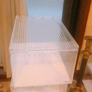 レプタイルボックス(爬虫類/両生類用品)