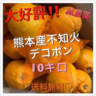 熊本産 訳あり不知火デコポン 10キロ箱込み 減農薬(フルーツ)