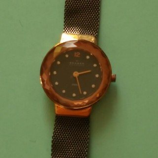 スカーゲン(SKAGEN)のスカーゲン ジャンク(腕時計)