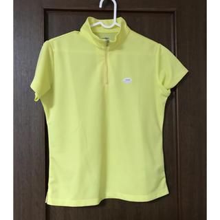 ティゴラ(TIGORA)のTIGORA ゴルフ  レディース ポロシャツ(ウエア)