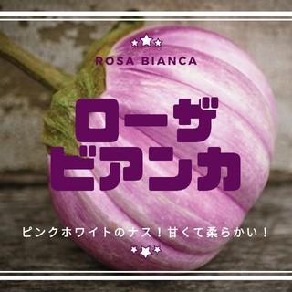 ナス【ローザビアンカ】甘くて柔らかい!種子20粒(その他)