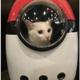 アイリスオーヤマ - ペット用品 キャリー  ペットバッグ 猫用 宇宙船