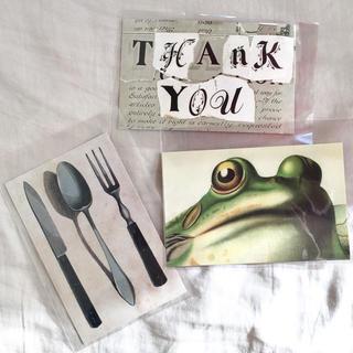 アッシュペーフランス(H.P.FRANCE)のJohn Derian ジョンデリアン ポストカード 3枚セット① カエル(切手/官製はがき)