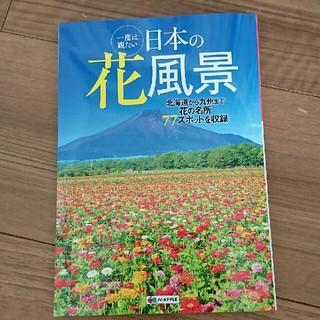 オウブンシャ(旺文社)の日本の花風景 本 ガイドブック(地図/旅行ガイド)