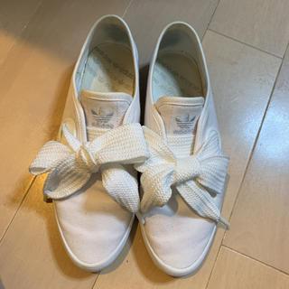 アディダス(adidas)のadidas スリッポン リボン(スリッポン/モカシン)