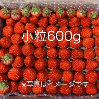 小粒ちゃん♡さがほのか苺600g●いちご イチゴ(フルーツ)