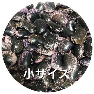 紫花豆(野菜)