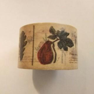 エムティー(mt)のmt マスキングテープ 図鑑シリーズ 植物(テープ/マスキングテープ)
