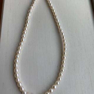 ベビーパール ネックレス k18 (ネックレス)