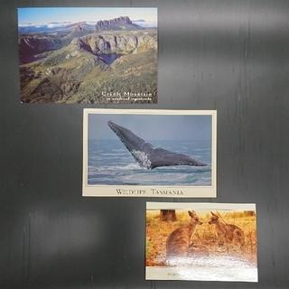 ポストカード オーストラリア タスマニア(写真/ポストカード)