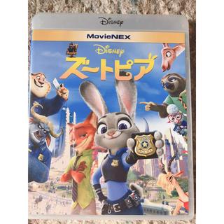 ディズニー(Disney)のズートピア ted DVD&ブルーレイ(キッズ/ファミリー)