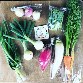 【あや様専用】選べる野菜セット渥美半島から直送!旬彩野菜バスケット(野菜)