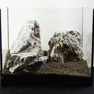 青龍石セット 25水槽  9-17cm  SS091 アクアリウム テラリウム(アクアリウム)