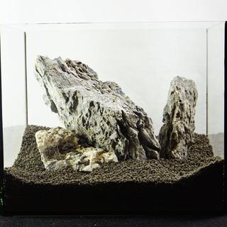 青龍石セット 25水槽  7-20cm  SS092 アクアリウム テラリウム(アクアリウム)