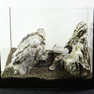 青龍石セット 25水槽  9-17cm  SS093 アクアリウム テラリウム(アクアリウム)