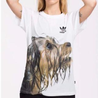 adidas - adidas originals / Tシャツ