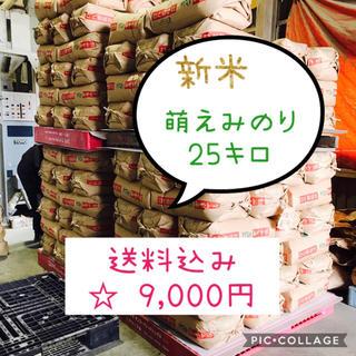 お買得!!大粒☆宮城県産萌えみのり25キロ