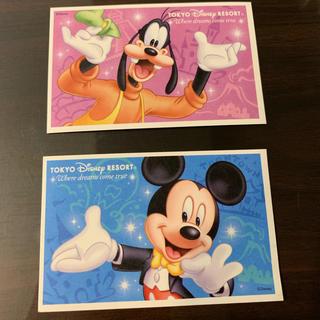 ディズニー(Disney)のディズニーリゾート ペアチケット(遊園地/テーマパーク)